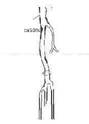 scannen0047